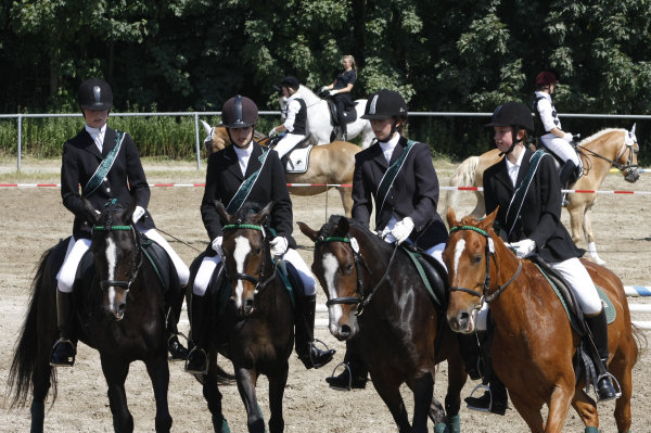 Quadrille vom Greenhof